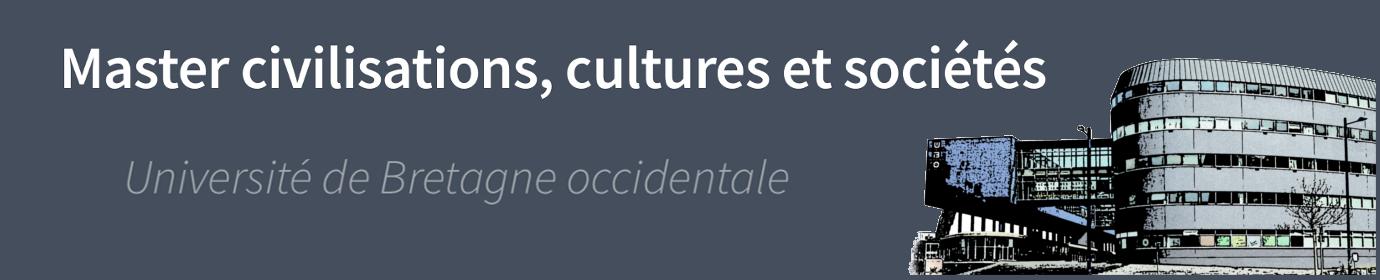Master civilisations, cultures et sociétés
